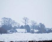 2010-02-22_14-01-28
