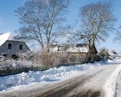 2010-02-23_11-49-36