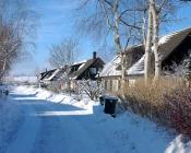 2010-02-23_12-17-27
